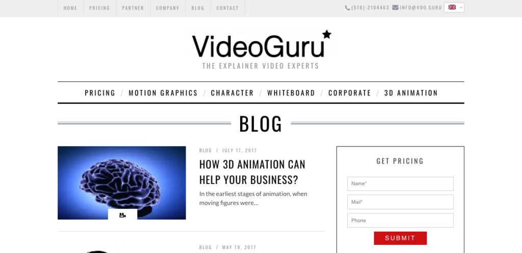 Video Guru-Explainer Video Expert